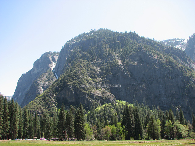 Meadow at Yosemite National Park