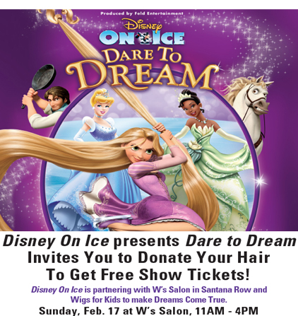 Disney on Ice Dare to Dream San Jose Special with Wigs for Kids