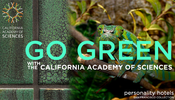 San Francisco Personality Hotels Go Green Package