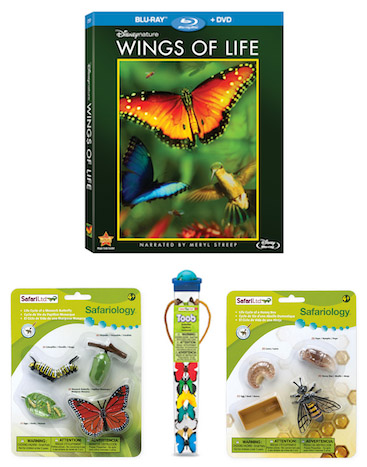 Disneynature Wings of Life Blu-ray Combo pack prize giveaway