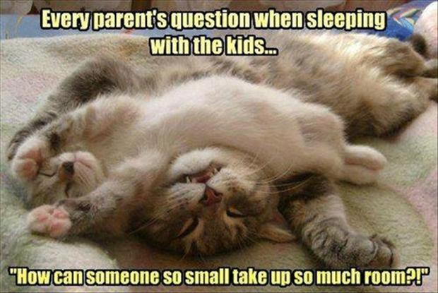 Sleeping With Kids Funny Quote About Kids