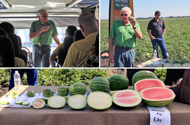 Perry & Sons Watermelon Farm Tour Courtesy of Safeway