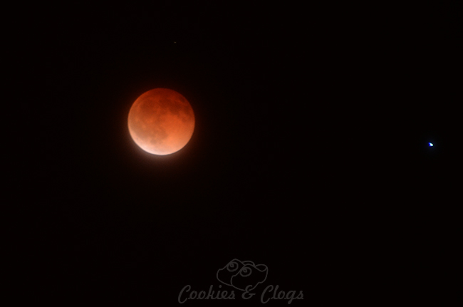 Blood Moon - April 15, 2014 #BloodMoon
