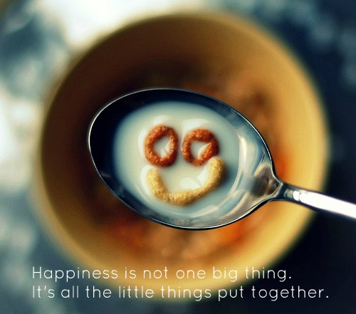 Quotes about happiness – It's about the little things put together #Quotes