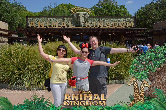 Walt Disney World | Family Travel | Disney's Animal Kingdom | 2015 Disney Social Media Moms Celebration made our family vacation so special and provided valuable blogging tips.