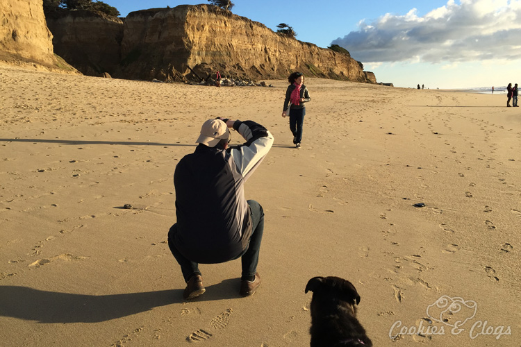 Family Travel | San Francisco Bay Area in California | We just discovered a great family beach that is also dog friendly (on leash). Check out our visit to Poplar Beach in Half Moon Bay.