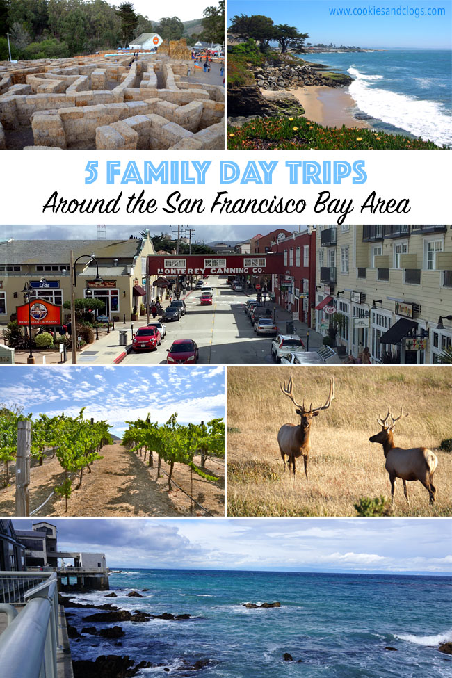 Cookies & Clogs | Travel Tips| When deciding what things to do in San Francisco Bay Area, try these 6 family day trips with kids. Read reasons why you should visit Monterey, Napa, Half Moon Bay, Santa Cruz, and Point Reyes and what to see and do there.