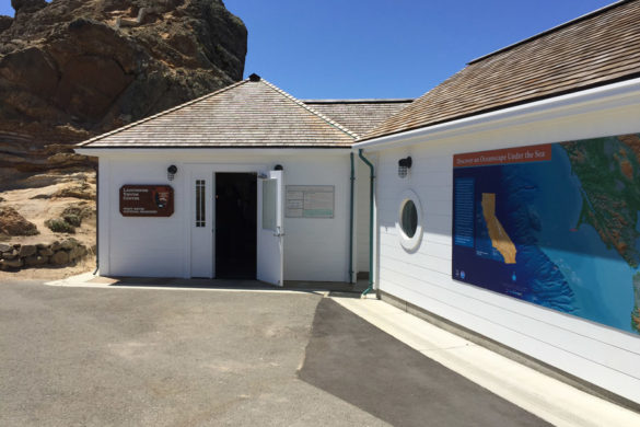 Cookies & Clogs | Want to take a family road trip to Point Reyes National Seashore in Point Reyes, CA? Here are several things to do with the kids including the Point Reyes Lighthouse. See what the climb down is like and if it's worth the trek. Visitor center