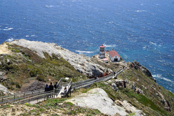 Cookies & Clogs | Want to take a family road trip to Point Reyes National Seashore in Point Reyes, CA? Here are several things to do with the kids including the Point Reyes Lighthouse. See what the climb down is like and if it's worth the trek. Overview from observation deck