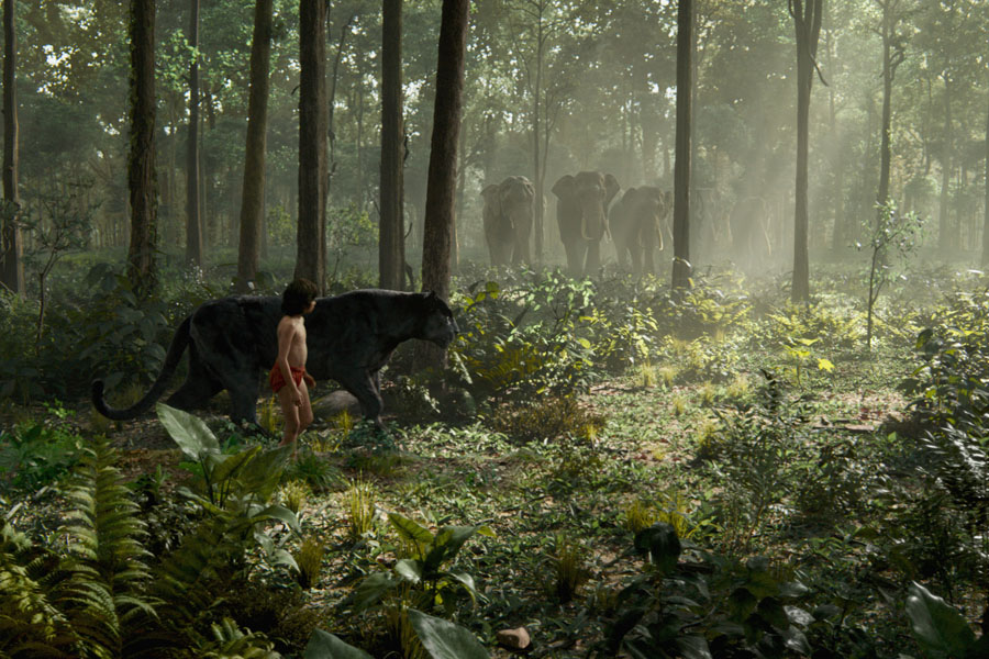 Cookies & Clogs | Movies | The Jungle Book will soon be on Blu-ray, DVD, and Digital HD. Read about the 6 fun facts shared by Producer Brigham Taylor and Visual Effect Supervisor Rob Legato in this interview.