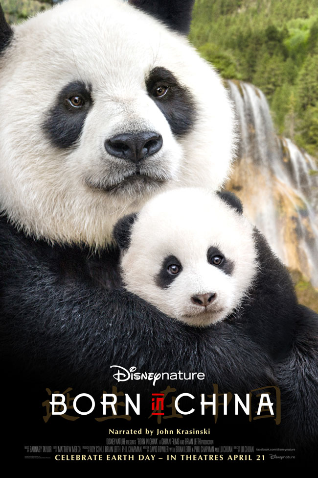 Cookies & Clogs | Movies | Monkey, leopards, and bears — oh my! I'm so excited for the new Disneynature Born in China movie! Check out these Born in China Activity Sheets and Homeschool Lesson Ideas / Educator Guide.