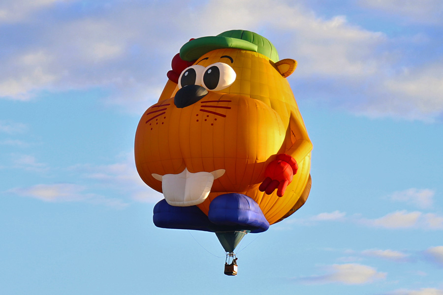 2017 Albuquerque International Balloon Fiesta in New Mexico Special Shapes Rodeo Beaver