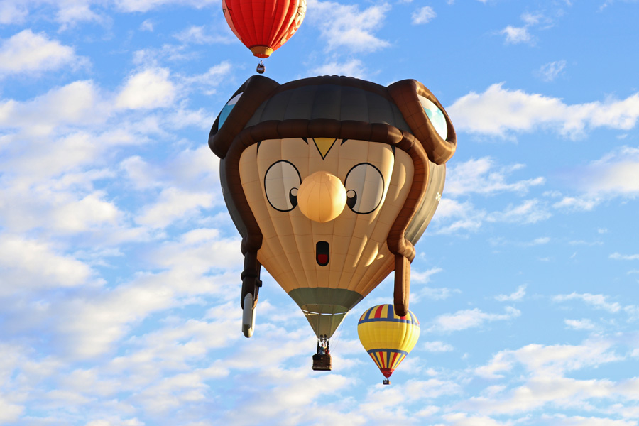 2017 Albuquerque International Balloon Fiesta in New Mexico Special Shapes Rodeo Pilot