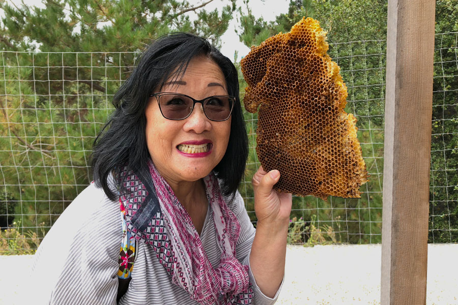 Mother Daughter Road Trip to Monterey in the 2018 Buick Enclave - Carmel Valley Ranch Beekeeping