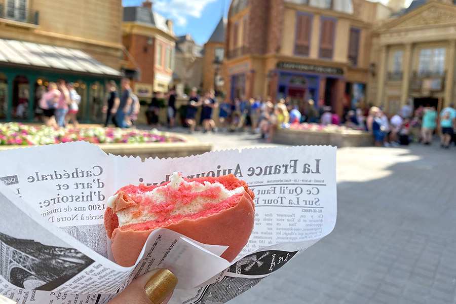 Walt Disney World France Pavilion Macaron Ice Cream Sandwich